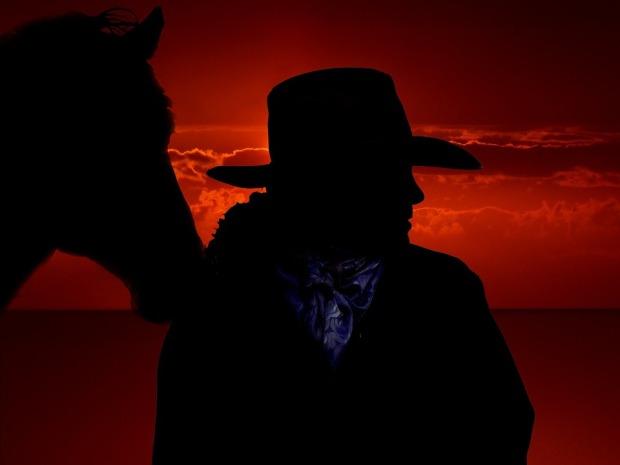 horse-301257_960_720