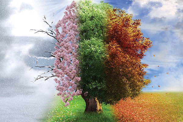 15 Word Story – Four Seasons