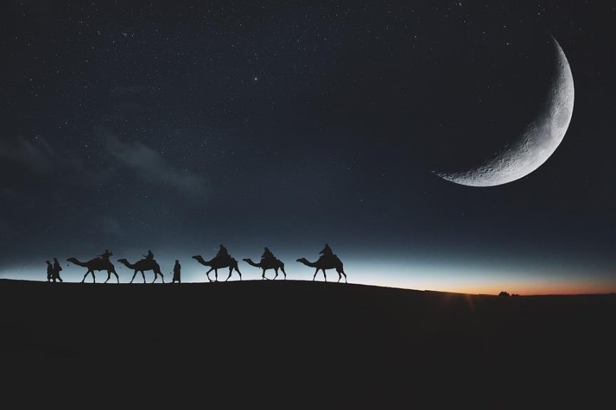 15 Word Story –Desert