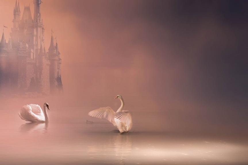 15 Word Story –Swan